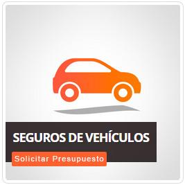 Pico siempre seguro solicita un presupuesto vehiculos